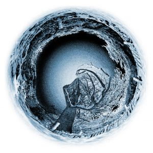 Blue Circle Tree Photo Art